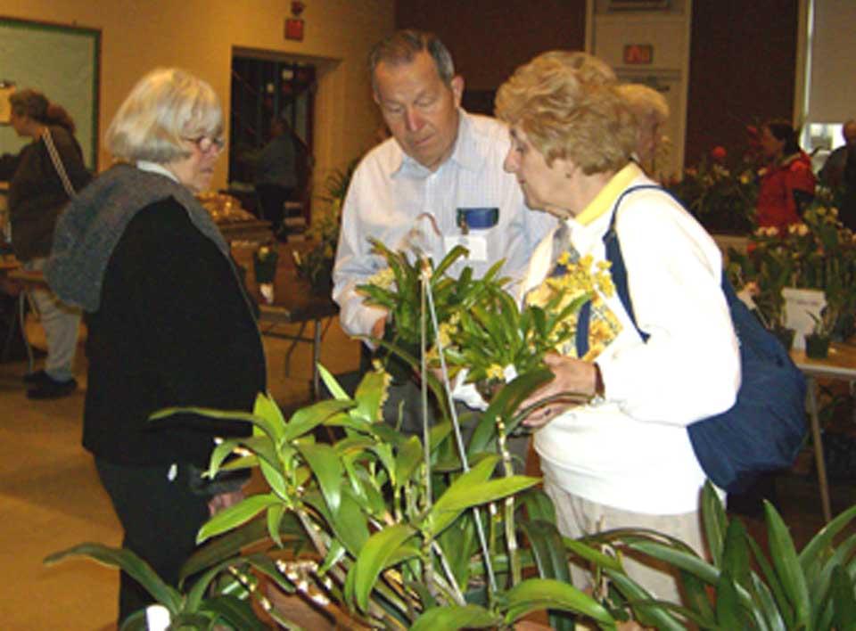 Sandie Kaplan looking at sale plants with Ed and Barbara Bork