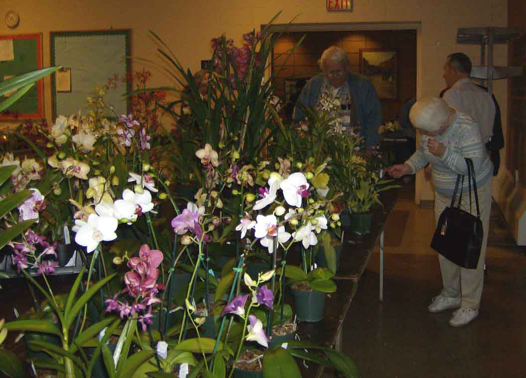 One of the sale tables, with members Carlos Perez and Vija Clark selecting plants